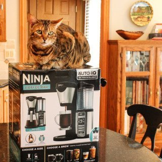 The Best Coffee Makers: Ninja Coffee Bar Brewer, Nespresso Citiz, and Technivorm Moccamaster